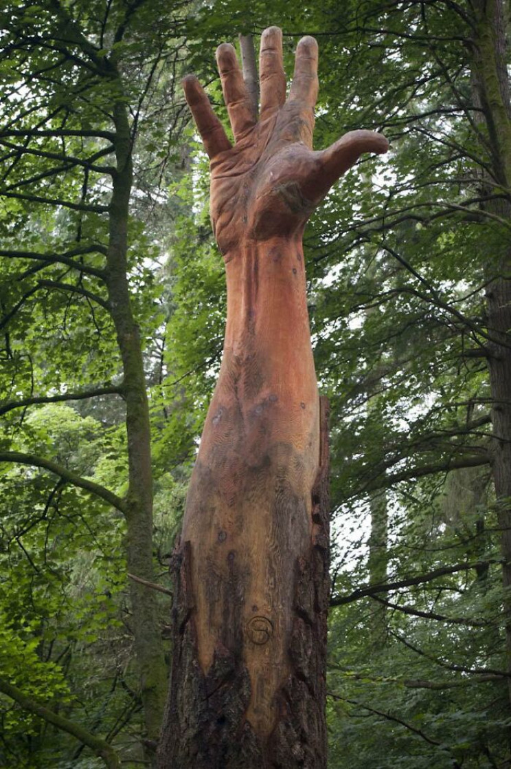 Sculptor Turns Storm-Damaged Tree into 50-Foot Hand