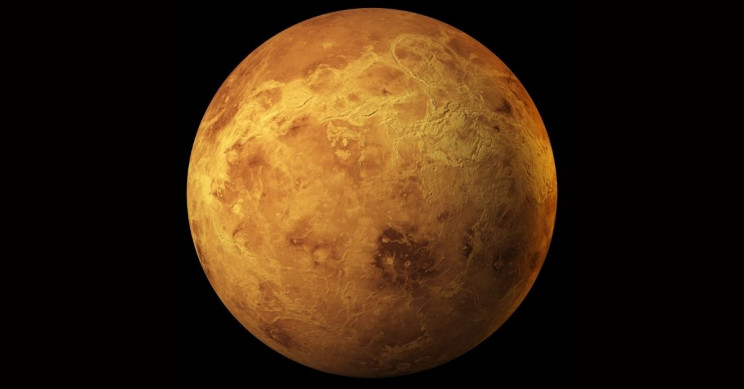 Alien Life Signs Possibly Detected on Venus, Says Study
