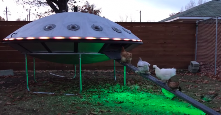 Guy Builds UFO Chicken Coop and Attracts 'Eggcelent' Puns Online