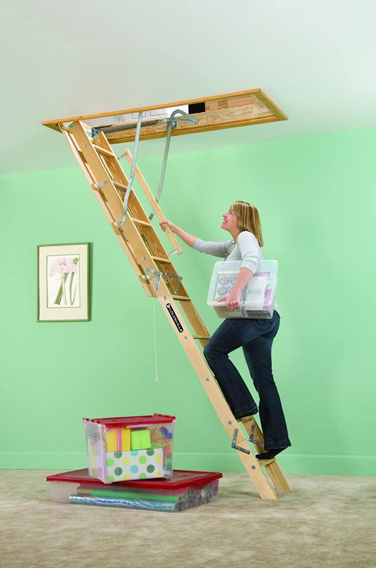 garage organizing ladder