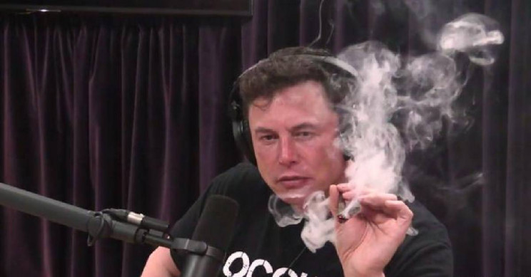 Elon Musk Points out the Irony of Having People in Jail for Selling Weed When It Has Now Become a Legal Business