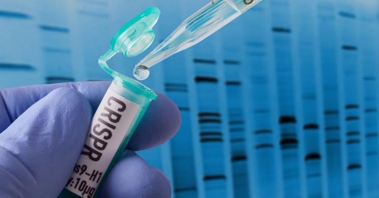 CRISPR Rids Genetic Diseases of 3 People in Experimental Study