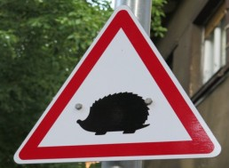 Will the UK's New 'Hedgehog' Road Sign Save the Threatened Animal?