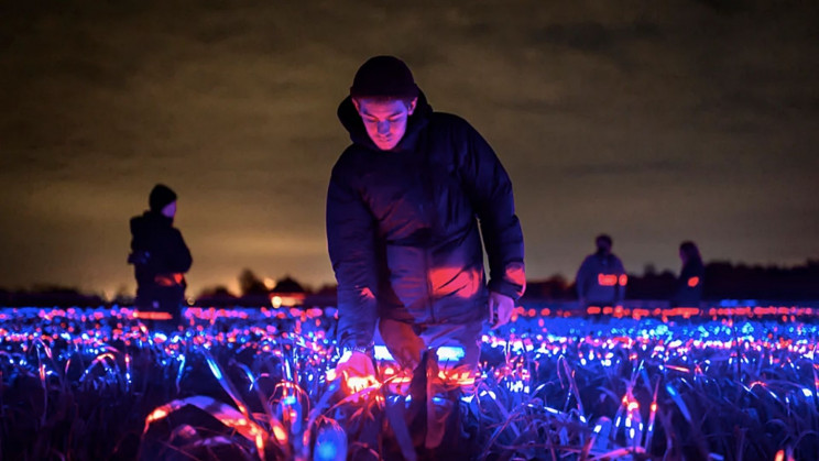'Dancing' Ultraviolet Light Show Helps Plants Grow Faster