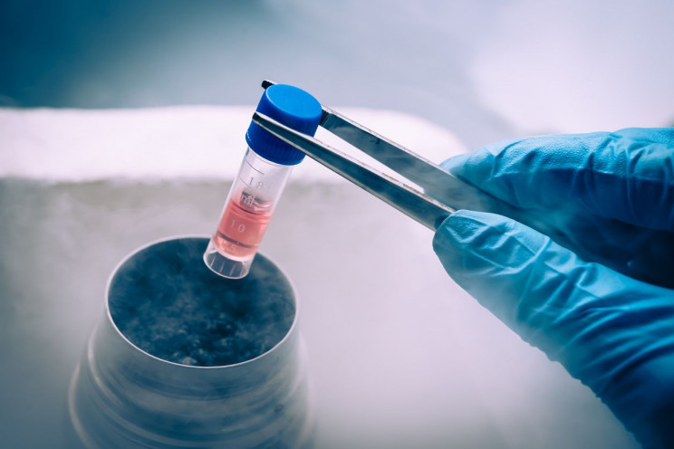 The Science of Cryogenics and Why It's So 'Cool'