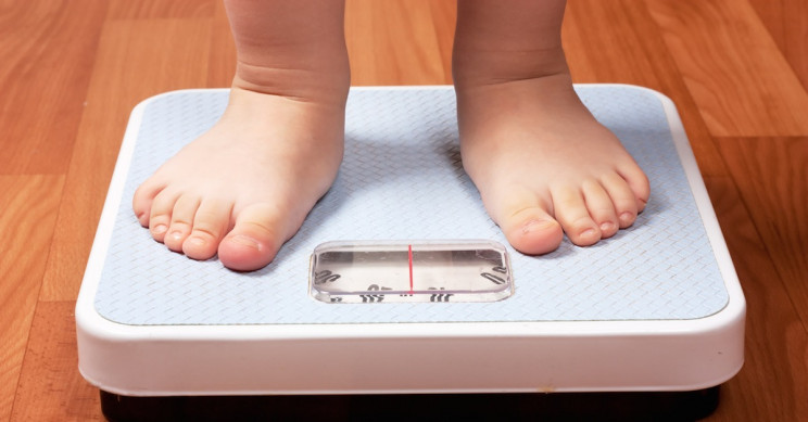 Child Obesity Could Be Linked to Everyday Chemicals in Plastics, New Study Finds
