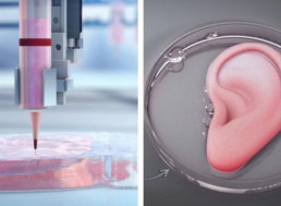 The Science Fiction World of 3D Printed Organs