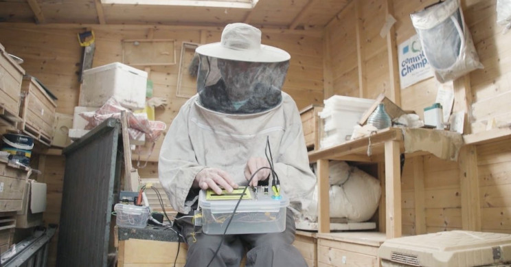 Beekeeper Creates Electronic Music out of Profession