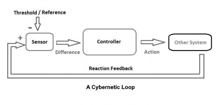 A cybernetic loop