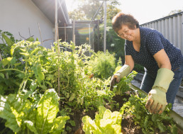 Using Supermarket Fruits, Vegetables, and Herbs to Grow Your Own
