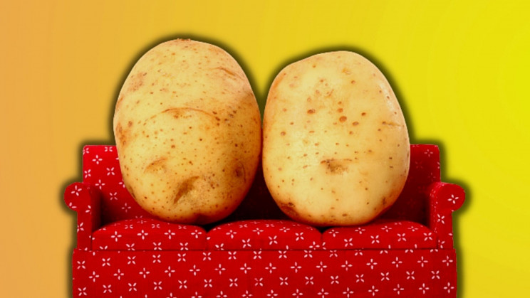 Using Human Proteins Helps Potatoes and Rice Grow 50% Bigger