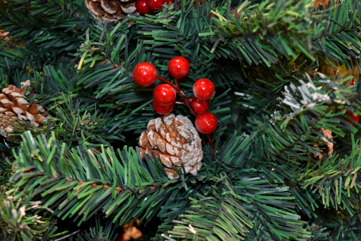 6 Ways You Can Reuse Your Christmas Tree After Holidays