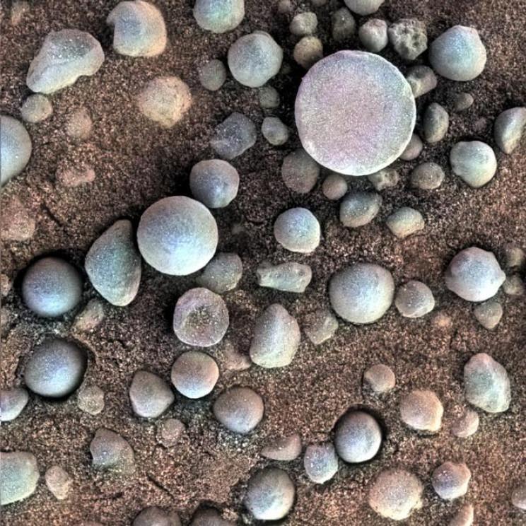 Blueberries Mars