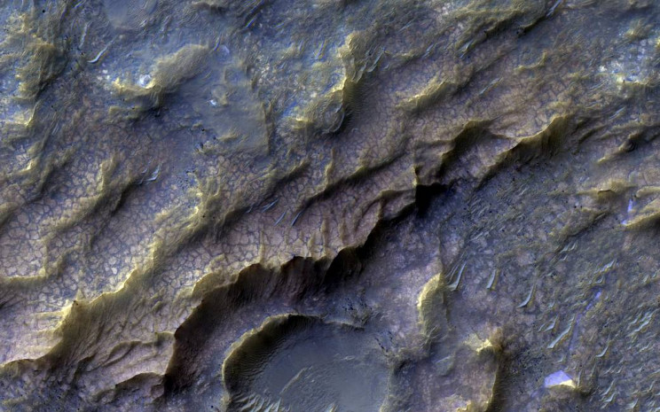 Dragon Scales Mars