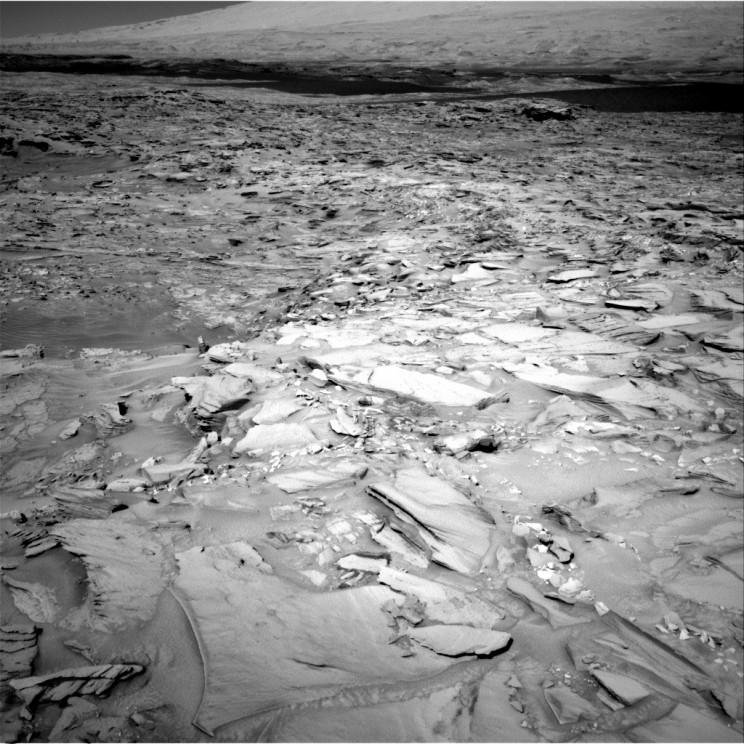 Fish-shaped rock on Mars