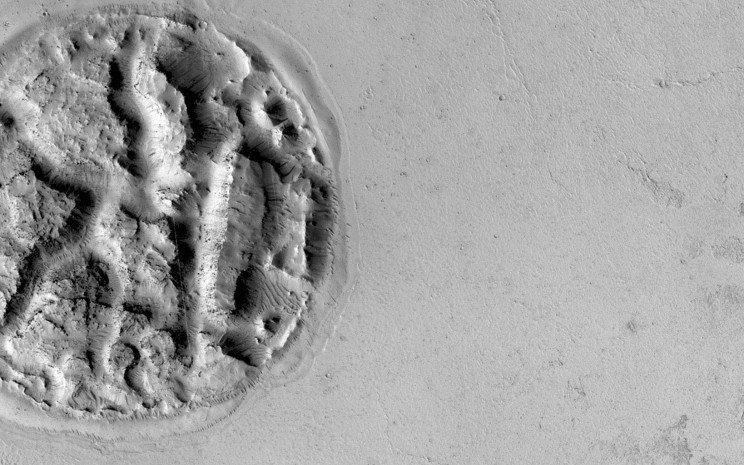 Waffle shaped island on Mars