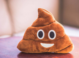 These Scientists Want Photos of Your Poop to Train AI