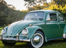 "The Volkswagen Beetle: You Gotta Love ""The Bug"""