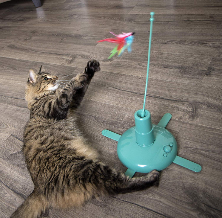 7 Amazing Cat Toy Inventions That Will Change Your Cat's Life