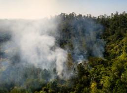Burning Amazon Smoke Has Turned São Paulo's Skies Dark during the Day