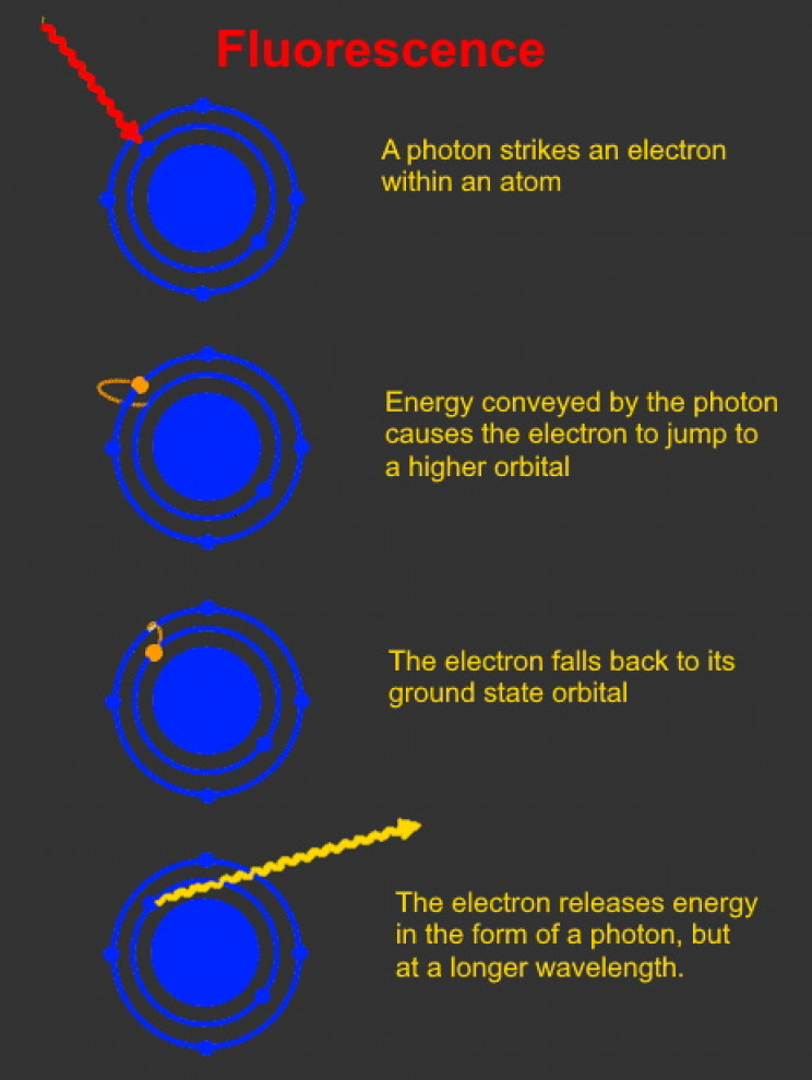 How fluorescence works