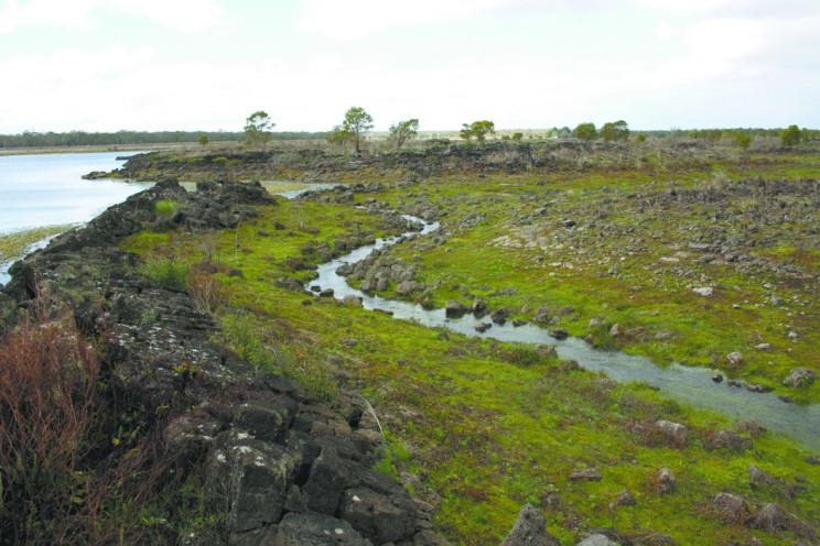 Australian Bushfires Unveil Ancient Aquatic System Older Than the Pyramids
