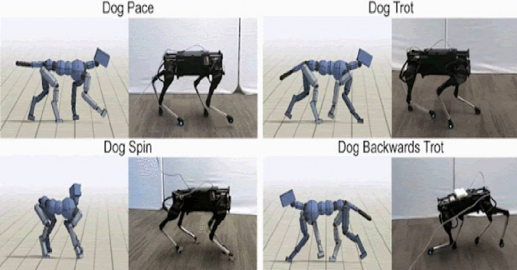 Google Researchers Use AI to Teach Robots to Move like Real Dogs