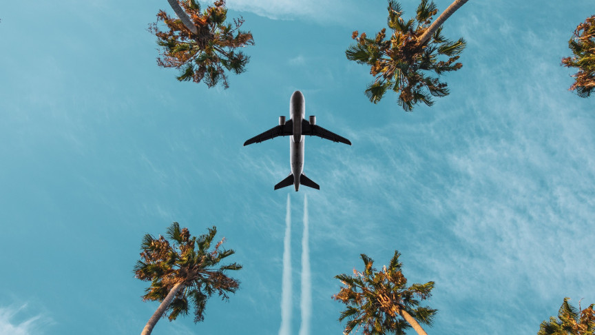 Scientists Say We Can Reduce Emissions by 68%. With Plant-Based Jet Fuel?