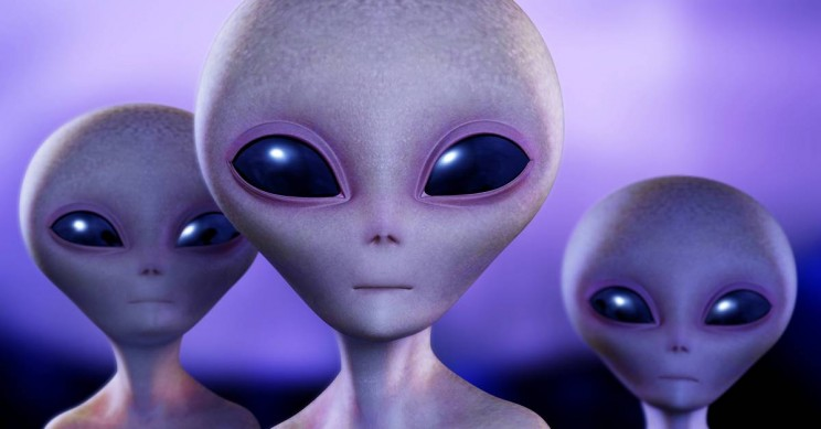 Figuring Out Whether Aliens Exist: Possible Resolutions to the Fermi Paradox