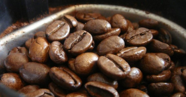 how caffeine works coffee beans
