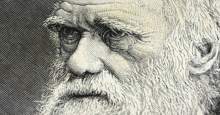 13 Little Known Facts about Charles Darwin