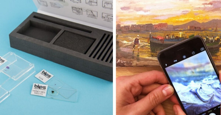Turn Any Phone Camera into A Microscope with this Tiny Device