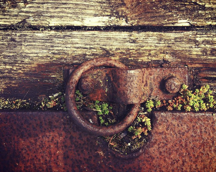 software engineering trends Rust