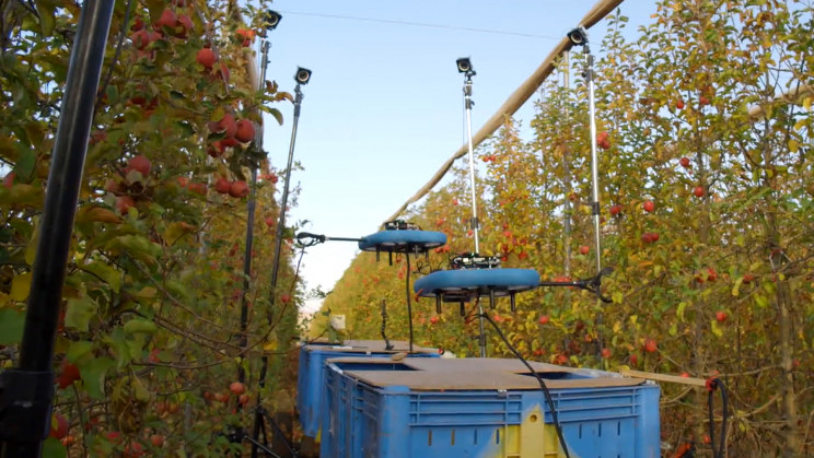 Flying Autonomous Robot Uses AI to Identify and Pick Ripe Fruit