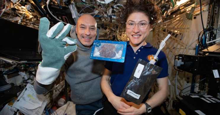 Astronauts baked cookies in apartment and it took eternally