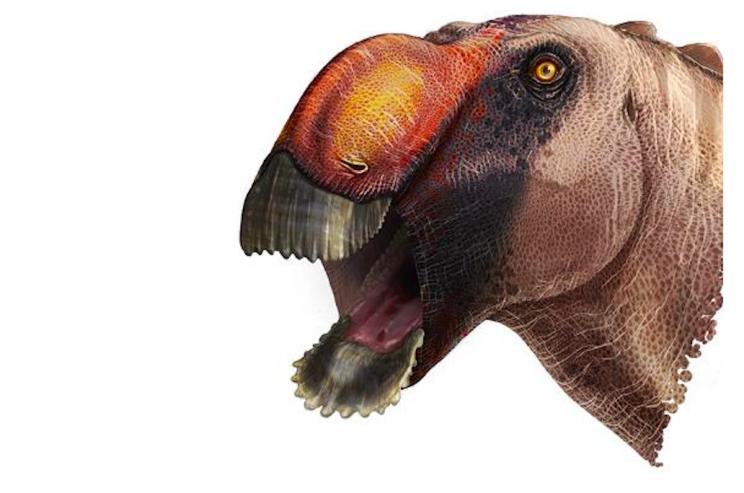 A Bizarre Duck-Billed Dinosaur Was Recently Identified By Scientists