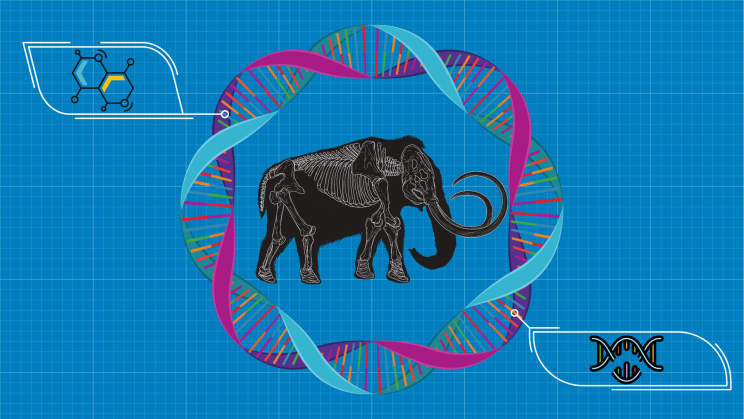 Scientists Are Trying to Revive Woolly Mammoths With CRISPR