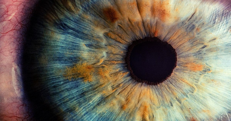 Anonymous Teen 'Blasts Away' Crucial Retina Tissue Staring Into Laser Pointer