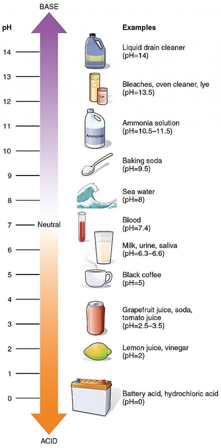 acid rain pH