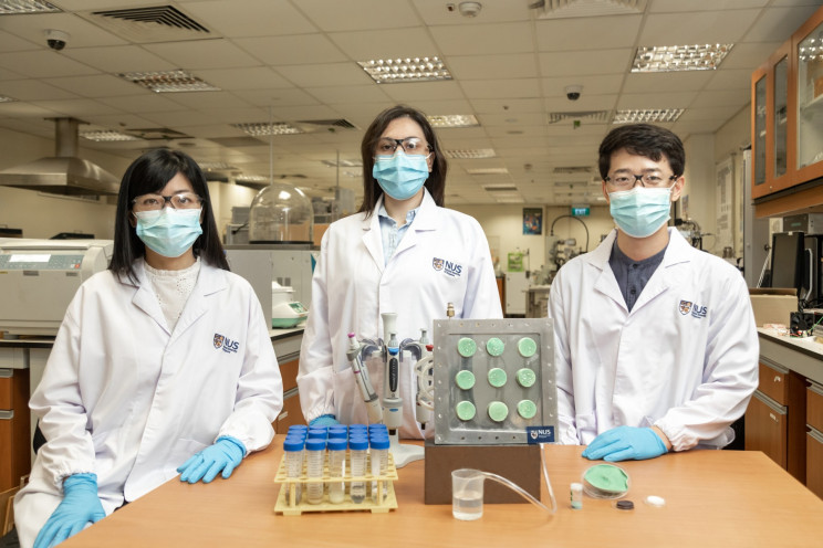 Researchers Turn Air into Clean Water Using Smart Aerogel