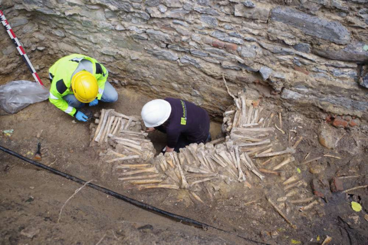 Researchers Discover Creepy Medieval Wall Made Of Human Bones in Belgium