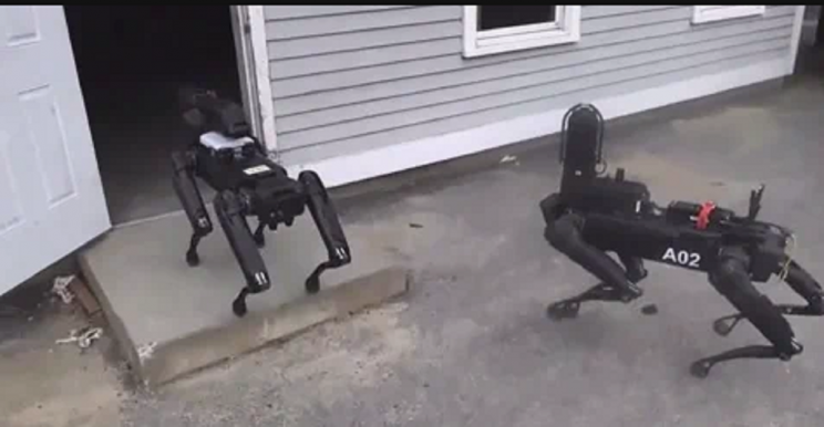 Black Mirror becomes reality: MA police tests robot dog