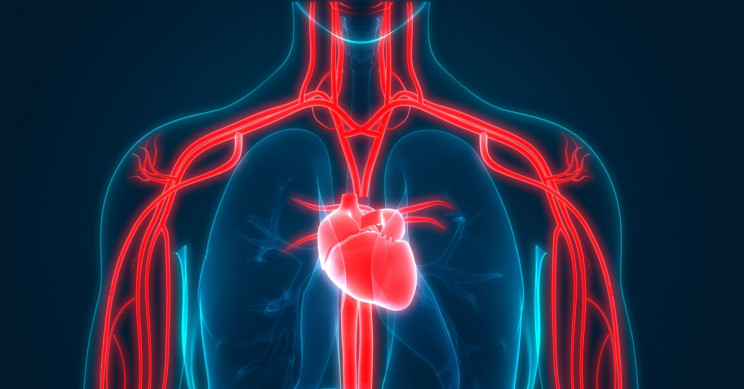 New Biomarker 'Fingerprint' with AI Technology Can Now Predict Future Heart Attacks