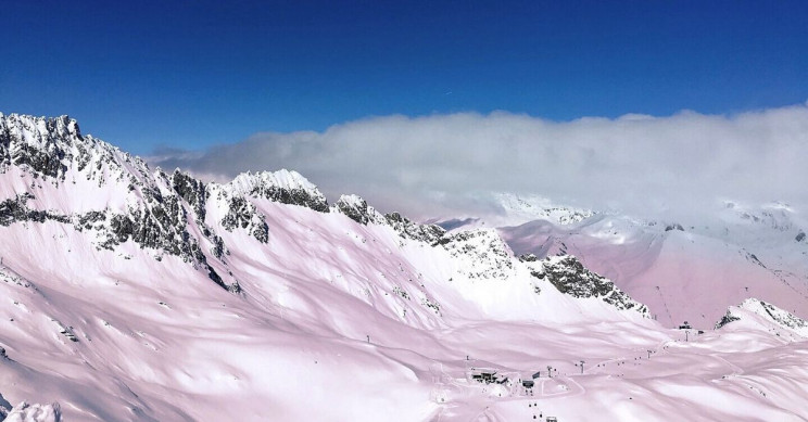 Pink ice in Alps sparks algae probe