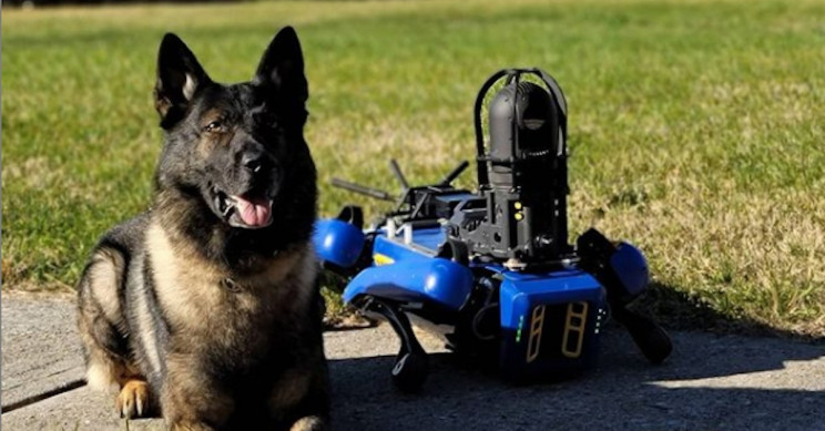 NYPD Recruits New Robot Dog with Extendable Arm