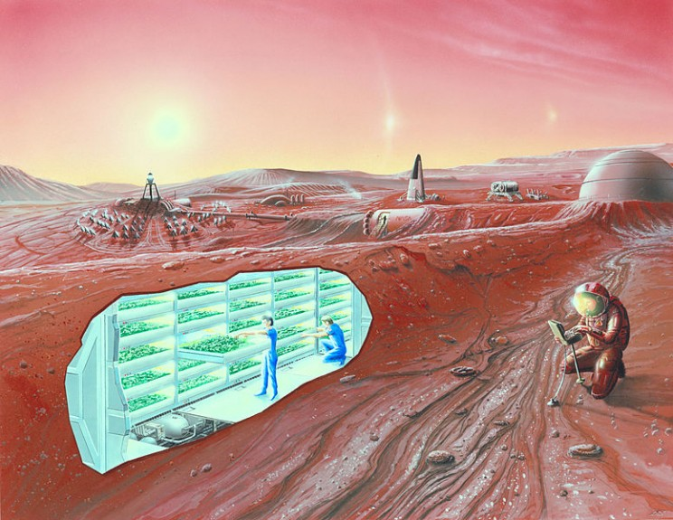 What Would a Martian Colony Look Like?