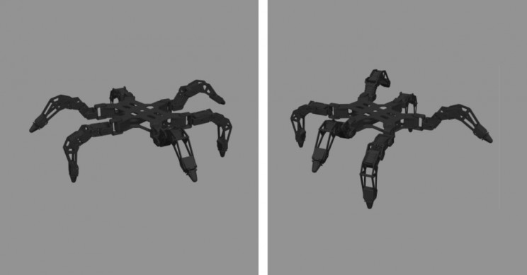 Researchers Successfully Recreate Astrocyte Cell Function in a Hexapod Robot