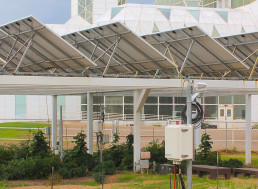 Growing Crops Under Solar Panels Could Substantially Boost Energy Production