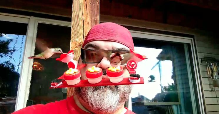 Colorado Man Creates Wearable Hummingbird-Feeding Device