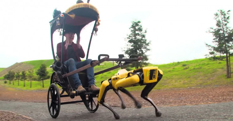 "Robodog Drags ""Mythbusters"" Co-Host Adam Savage Around in Rickshaw"